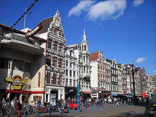 Many MNCs have set up  shops in Netherlands.