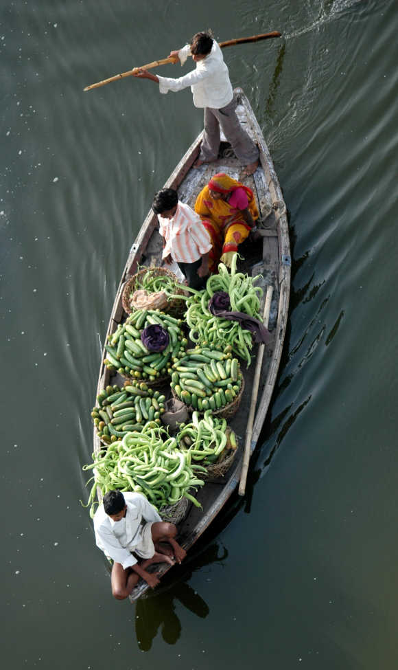 Farmers ferry cucumbers to sell them in a market in Allahabad.