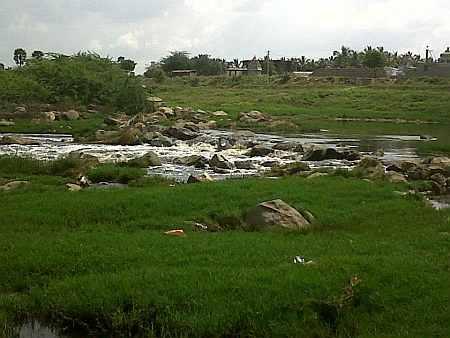 Noyyal River, South River Garden