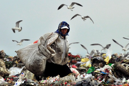 A garbage collector looks for recyclable waste as seagulls look for food at a garbage dump site in Dalian.