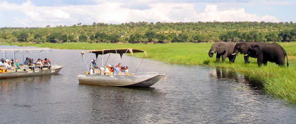 Foreign tourists in safari riverboats observe elephants along the Chobe river bank near Botswana's border.