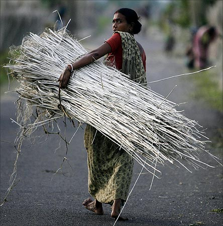 A farmer carries a bundle of jute in Singur.