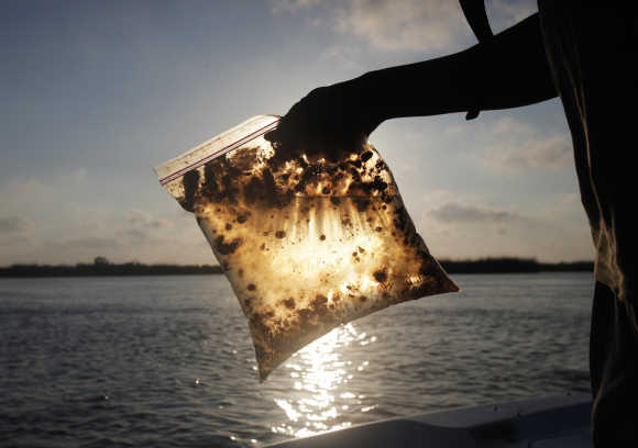 A man holds a plastic bag with oil from the Gulf of Mexico oil spill south of Freemason Island, Louisiana.