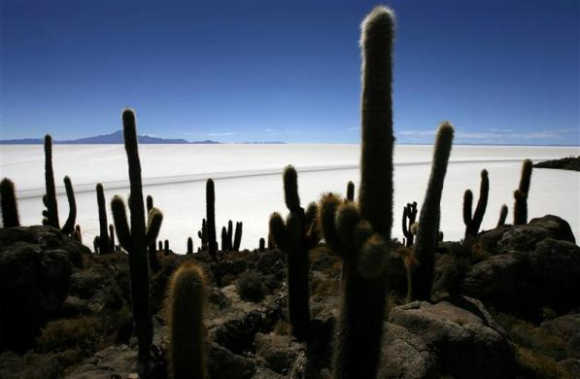 The world's largest salt flat, the Salar de Uyuni, is seen from Incahuasi island in the south of Bolivia at 3676 meters above mean sea level.