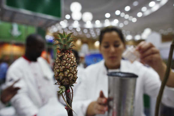 A pineapple bonsai is seen while chefs prepare food during an agricultural fair in Santo Domingo, Dominican Republic.