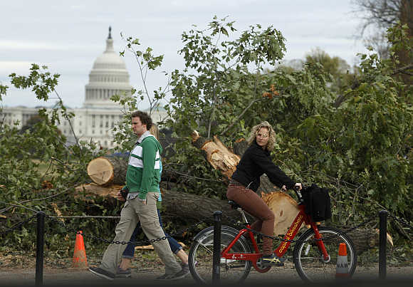 Pedestrians pass by a tree that was destroyed by Hurricane Sandy in Washington, DC.
