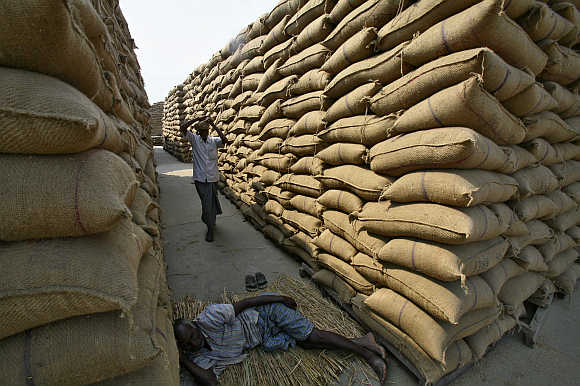 A labourer rests next to stacked sacks of paddy crop at a wholesale grain market in Chandigarh. Photo is for representation purpose only.