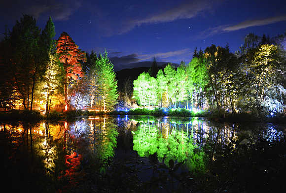 Trees lit by coloured lights are reflected in Askally Wood, Pitlochry, Scotland.