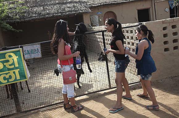 Tourists stand next to a goat inside a farm house near the Jhajjar district, Haryana.