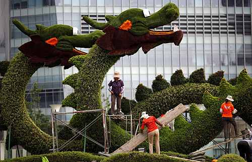 10Laborers work on a topiary tree sculpture of a dragon at the financial district of Pudong in Shanghai, China