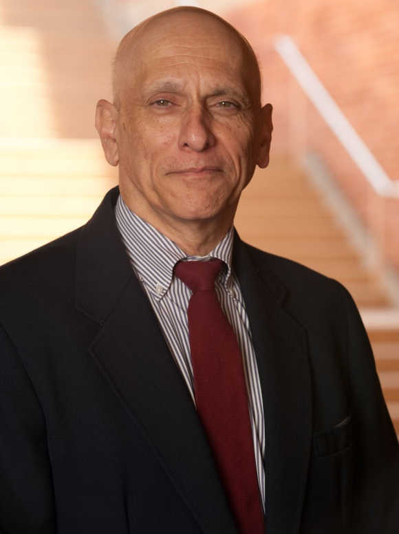 Uday Karmarkar, founder and director of the Anderson's Business and Information Technologies Project at the University of California, Los Angeles.