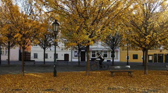 A cyclist rides his bicycle through Prague's historical neighbourhood of Kampa.