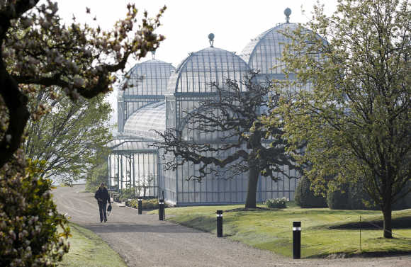 A visitor walks past one of the greenhouses on the grounds of the Belgian royal family's residence of Laeken in Brussels.