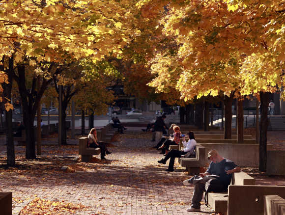 People sit under a canopy of fall leaves during a warm afternoon in Boston.