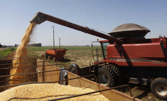A combine harvester loads corn kernels in La Paloma city, Canindeyu, 348km northeast of Asuncion, Paraguay.