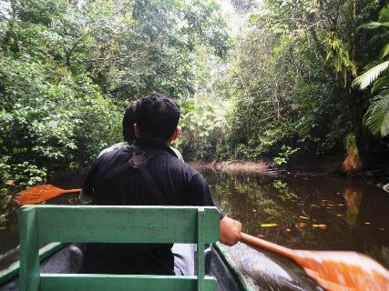Entering the Yasuni rainforest through a blackwater stream.