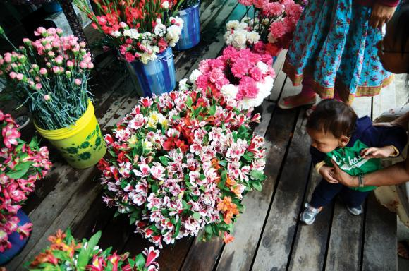 A curious child looks at a bucket of flowers at the second international flower show organised in Sikkim.