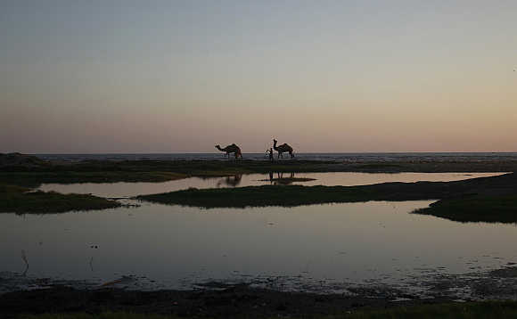 Men walk with camels during sunset by the sea in Karachi.