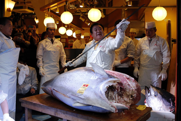Kiyomura Co's President Kiyoshi Kimura, who runs a chain of sushi restaurants, wipes a sword as he cuts a 222 kg (489 lbs) bluefin tuna at his sushi restaurant outside Tsukiji fish market in Tokyo.