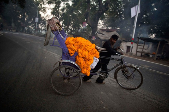 A man transports garlands of marigold flowers along the banks of the Ganges river ahead of Kumbh Mela in Allahabad.
