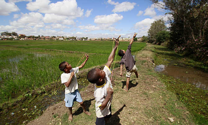 Boys use catapults to scare away birds from their rice paddy fields in the outskirts of the capital Antananarivo, Madagascar.