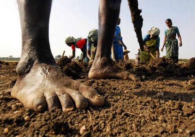 Can NGOs make govt's employment scheme a success?