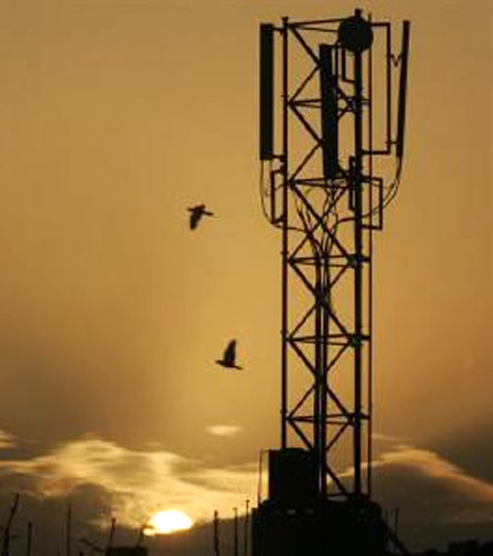India's mobile tower radiation norms absurd, says WHO