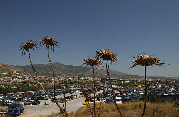 Confiscated cars parked at the Oddy yard in Athens.