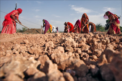Village women labourers work at the construction site of a road at Merta district in Rajasthan.