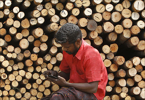 A worker uses his mobile phone as he sits in front of logs of wood for sale at a warehouse in Chennai.