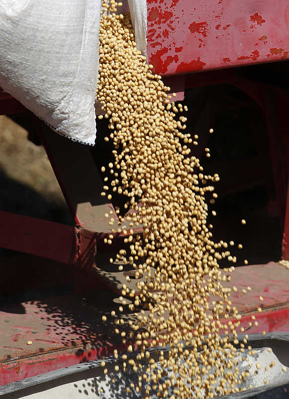 Soybeans are loaded in a sowing machine in Estacion Islas, Buenos Aires, Argentina.