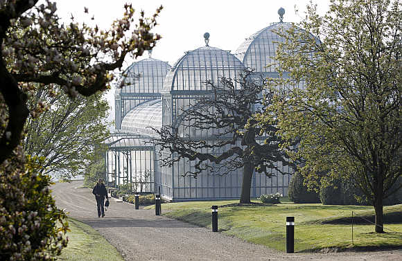 A visitor walks past one of the greenhouses on the grounds of the Belgian royal family's residence of Laeken in Brussels, Belgium.