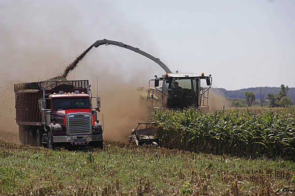 Harvesters chop corn at Sunburst Dairy in Belleville, Wisconsin, United States.