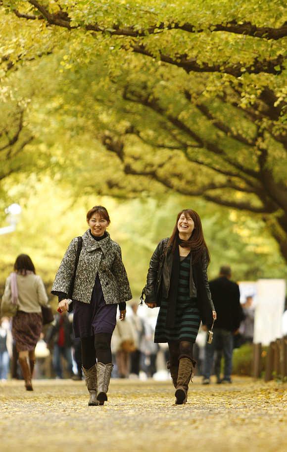 Women walk under ginkgo trees in Tokyo.