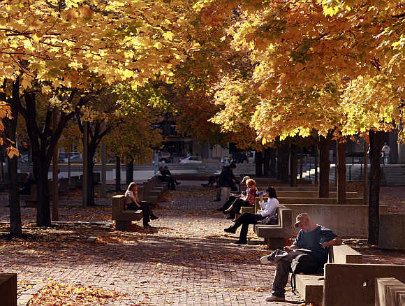 People sit under a canopy of fall leaves during a warm afternoon in Boston, Massachusetts.