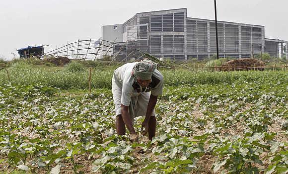 A farmer works a crop next to the closed Tata Motors Nano car factory in Singur, north of Kolkata.