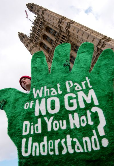 A protestor from pressure group Green Gloves demonstrates against genetically modified (GM) food.