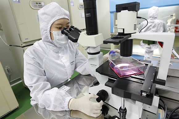 A researcher uses a microscope at an aseptic room of the FCB-Pharmicell laboratory in Seongnam, near Seoul, South Korea.