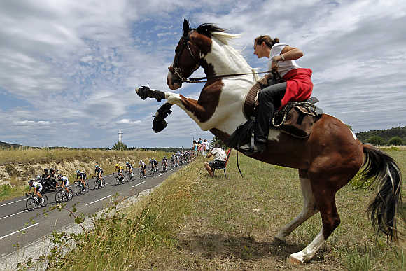 Pack of riders cycles past a woman on a horse during the Tour de France between Saint-Paul-Trois-Chateaux and Cap d'Agde, France.