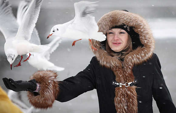 A visitor feeds bread to seagulls during a snowstorm in Stockholm, Sweden.