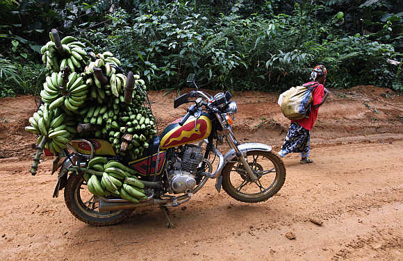 A motorbike taxi laden with bananas is parked between the town of Mundemba and village of Fabe, Cameroon.