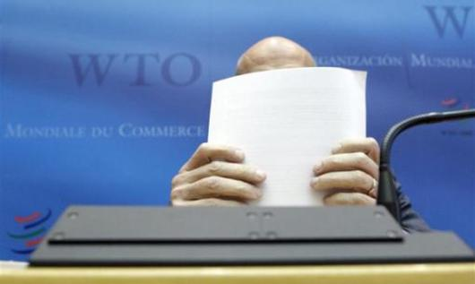 Pascal Lamy, director general of the WTO. US should address frictions through WTO dispute settlement procedures.