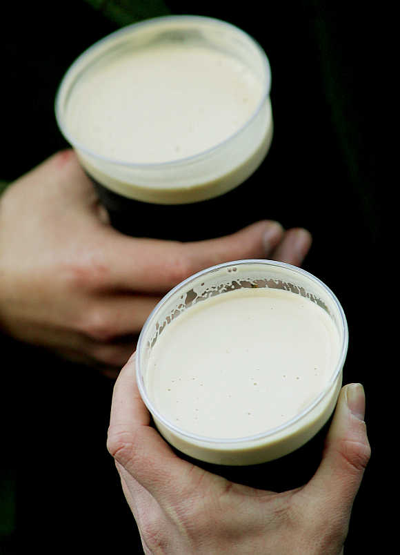Racegoers hold pints of Guinness on St Patrick's Day on the third day of the Cheltenham National Hunt Festival meeting in Gloucestershire, central England.