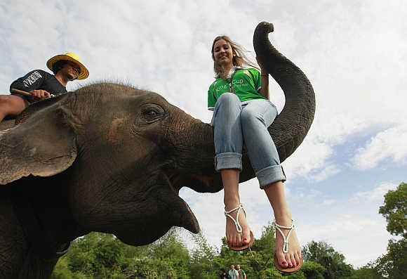 A tourist sits on an elephant's trunk during the opening of the King's Cup Elephant Polo Tournament in the resort town of Hua-Hin, some 160km south of Bangkok, Thailand.
