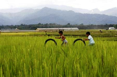 Children play with rubber tyres in a paddy field on the outskirts of Siliguri.