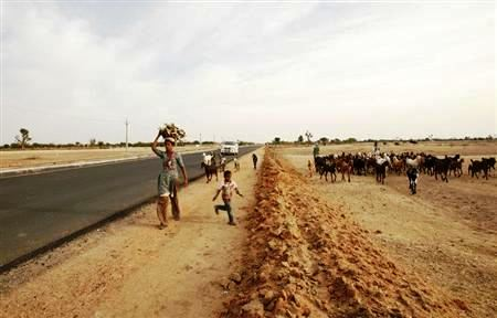 A woman carries firewood along a newly constructed road at Merta district in Rajasthan.