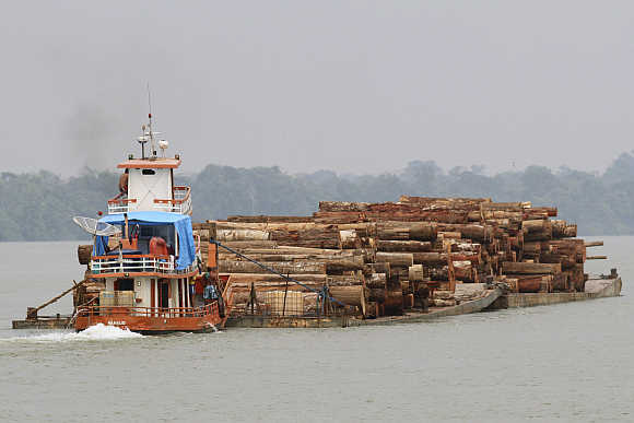 Logs cut from the Amazon rainforest are transported by barge to a shipping port, just off Marajo Island near the mouth of the Amazon River, in Brazil.
