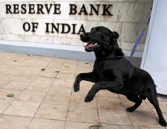 A sniffer dog from the Indian police is tied outside the Reserve Bank of India head office in Mumbai.