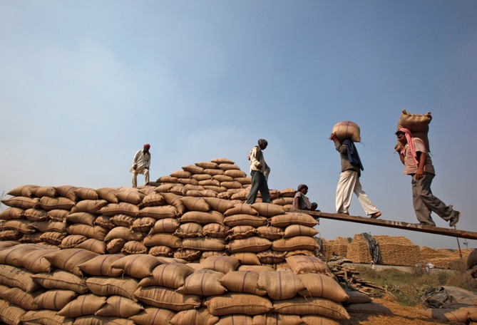 Labourers shift sacks filled with paddy crop at a wholesale grain market in Chandigarh.