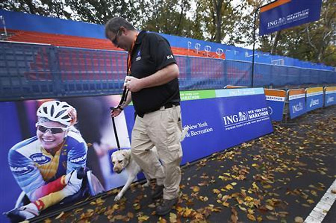 TCS paying top dollar for the New York marathon